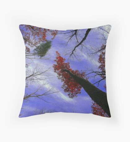 The View Above 3 Throw Pillow