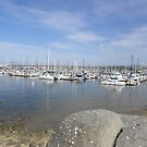 Fisherman's Warf Monterey by Sandra Gray