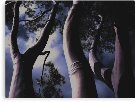 'Land Of The Giants' - Fitzroy - Melbourne Australia - 2007 by Michael Kienhuis