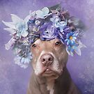 Flower Power, Joey by SophieGamand