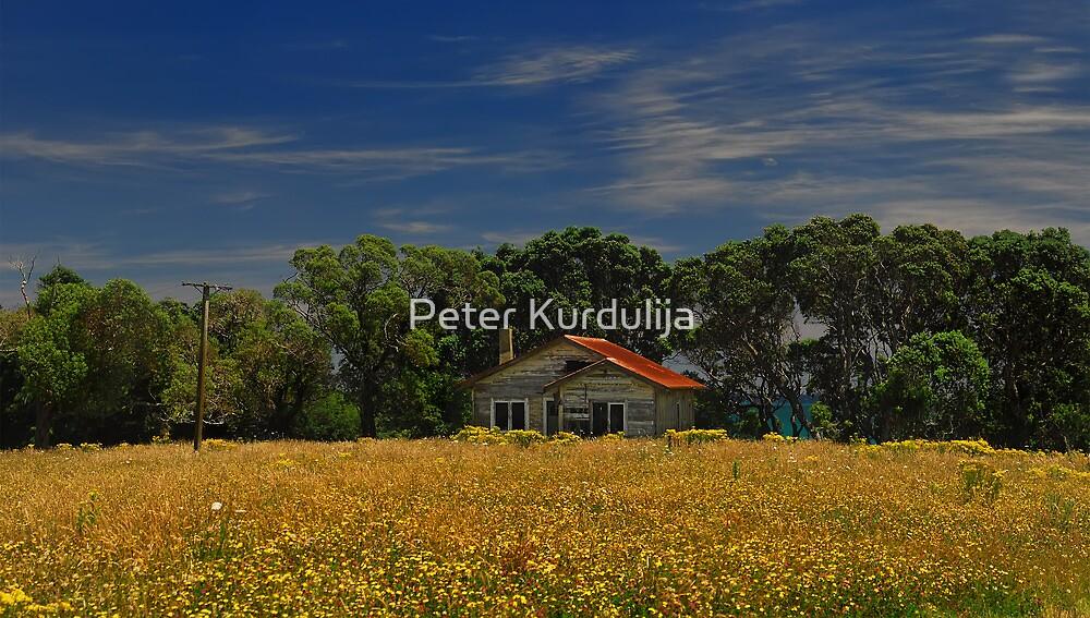 United Colors of Joy by Peter Kurdulija