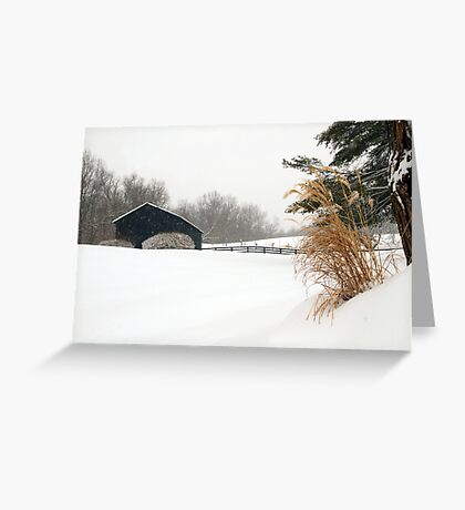 White Out in Rabbit Hash, KY Greeting Card