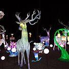Lichterfest von Ana Belaj