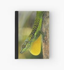SHOW OF Hardcover Journal