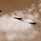 Retirement Age - RAAF F111 by Stecar