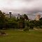 Best photo of a public park or public garden or Square in the Brissie area.