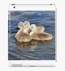 Cygnets iPad Case/Skin