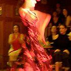Flamenco by elisabeth tainsh