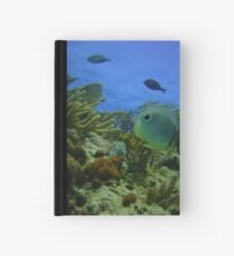 Butterfly Fish Hardcover Journal