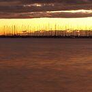 Sunset Marina by Sarah Howarth [ Photography ]
