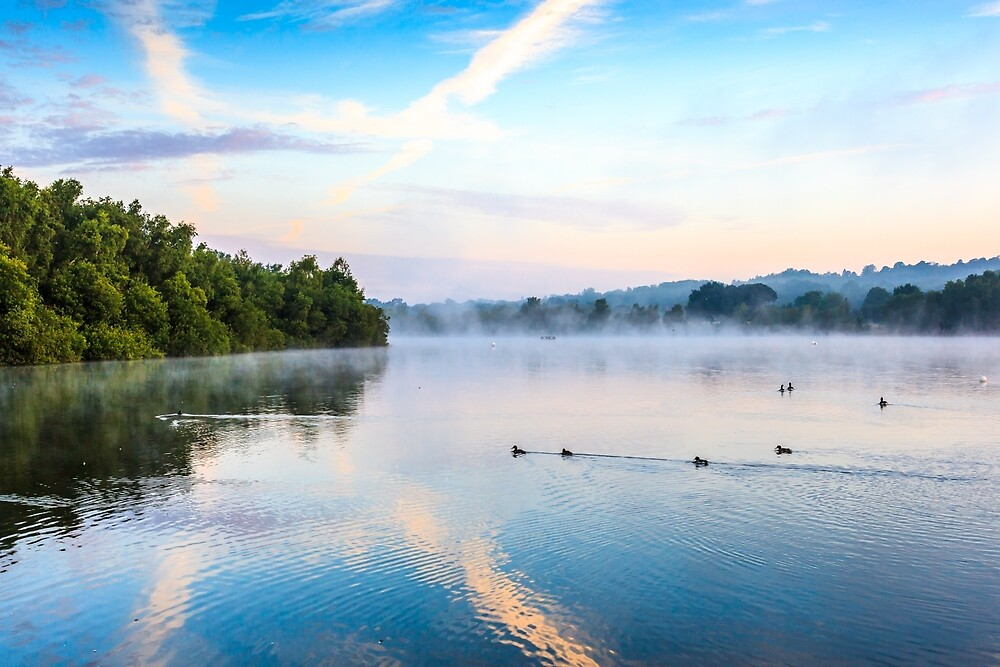 Misty Morning On The Lake 2 by colinstock