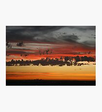 In Flight at sunset Photographic Print