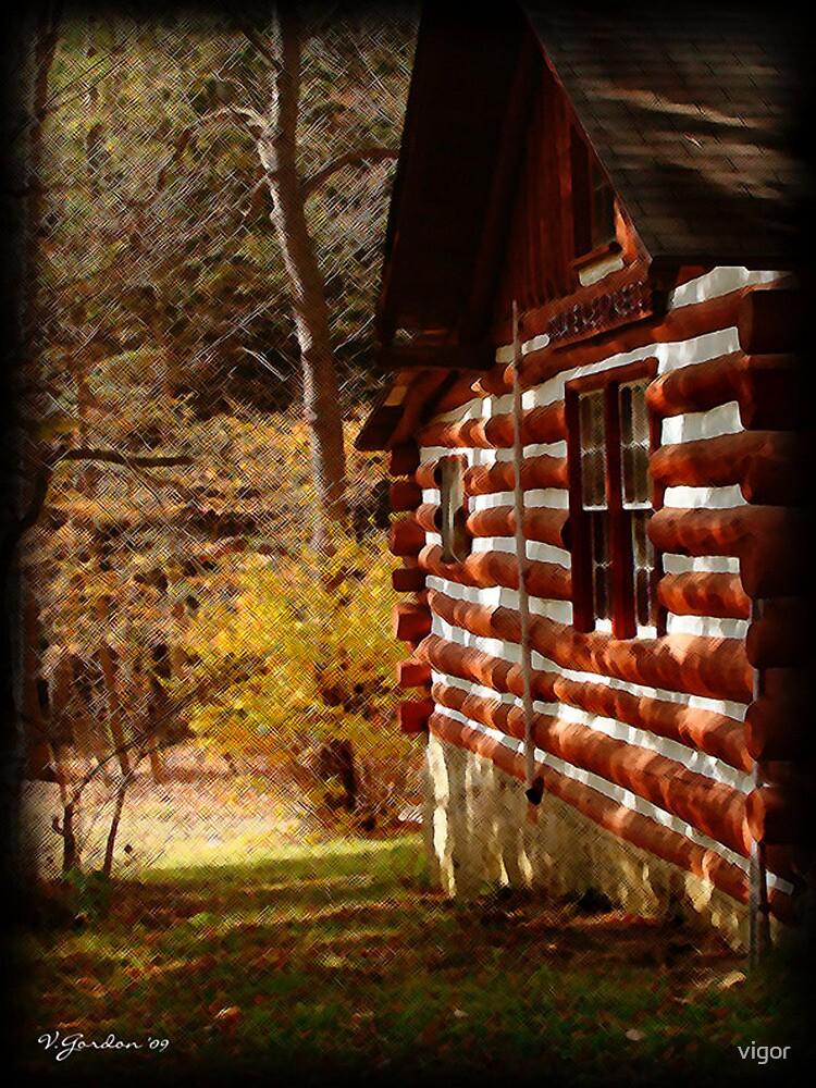 Red Log Cabin  by vigor