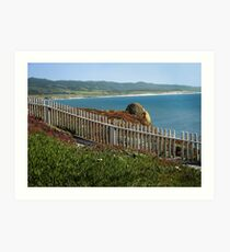 California Coast in Spring Art Print