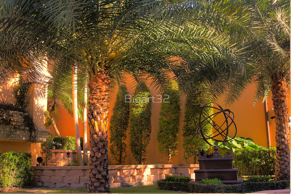 Palm decorated patio by Bigart32