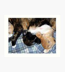 Newborns Nursing Art Print