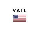 Vail USA American Flag Light-Color by TinyStarAmerica