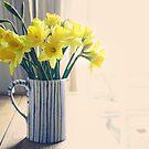 Daffodils by Sid Black