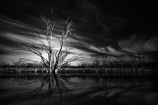Desolation by Varinia   - Globalphotos