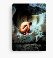 In Utero - Colour Canvas Print