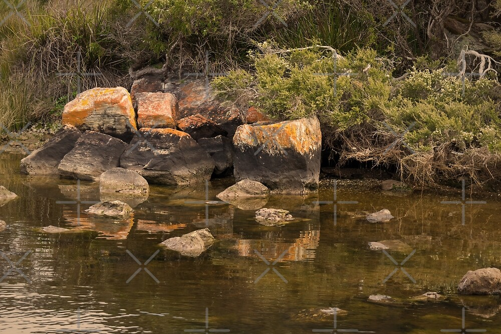 Rock Reflections at Blackwood Rivermouth, Augusta, Western Australia by Elaine Teague