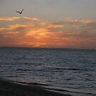 Autumn Sunset Dreams by GemmaWiseman
