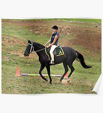 Stock Horse working at Lardner Park, Warragul, Vic Poster
