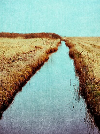 Through the Stream by Daniel Coulmann