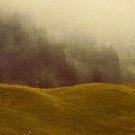 Fading Faith von Daniel Coulmann
