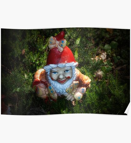 One of these creepy looking garden gnomes Poster