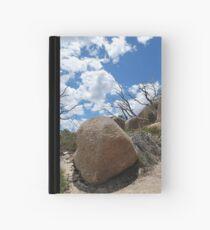 Dinosaur Egg  Hardcover Journal