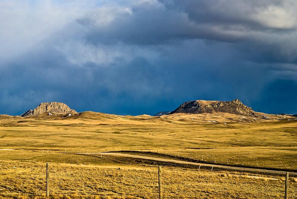 Heart of Montana 8 by Bryan D. Spellman
