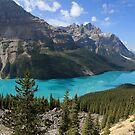 Peyto Lake, Banff National Park by Teresa Zieba
