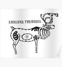 Animals of the North - Reindeer / Rangifer Tarandus Poster