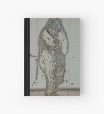 Water Snake, Bolzano/Bozen, Italy Hardcover Journal