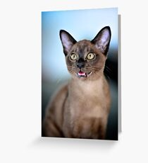 Can I jump that high? Greeting Card