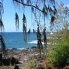 Beautiful Kauai by Sandra Fortier