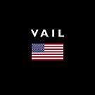 Vail USA American Flag Dark Color by TinyStarAmerica