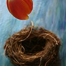 Tulip & nest by Anthemis