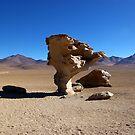 Stone Tree by Elena Vazquez