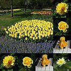 Sunshine Flowers Collage by BlueMidnight