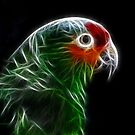 Fractal Parrot by Teresa Zieba