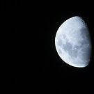 3/4 moon by strawberries