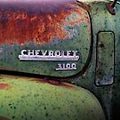Rusted Green 3100 by Larry Costales
