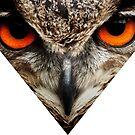 Owl Eyes Triangle by rewstudio
