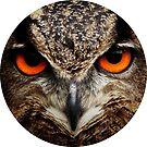 Owl Eyes by rewstudio