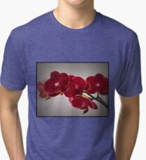 Orchids For My Birthday Tri-blend T-Shirt