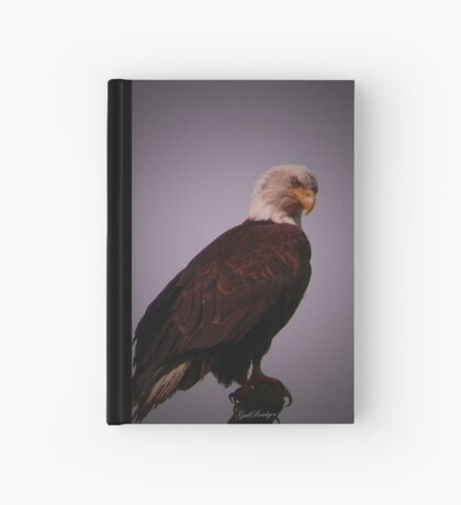 Eagle Eye Hardcover Journal