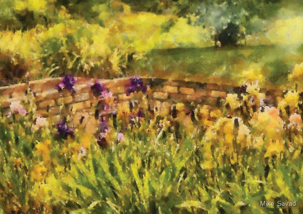 Iris - By the Bridge by Michael Savad