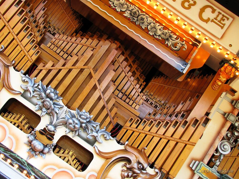Abstract Organ by Carol Bleasdale